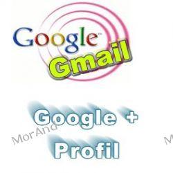 Jak wykorzystać swój profil na G+ do marketingu internetowego VGO12 Oprogramowanie