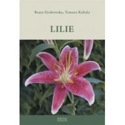 Lilie, Grabowska, Kubala