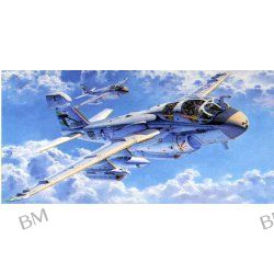 EA-6B PROWLER 'VAQ-135 BLACK RAVENS'