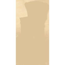 Piec żeliwny ETIUDA