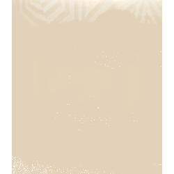 Piec żeliwny MERLIN