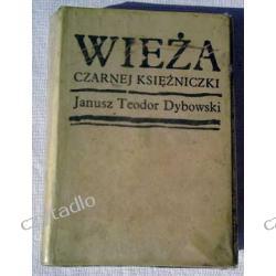 Wieża czarnej księżniczki - Janusz Teodor Dybowski