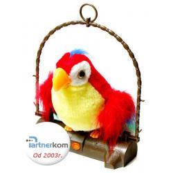 Ara Gadająca Papuga - Wysokość 29cm