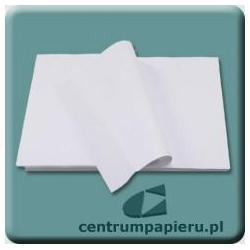 Centrum Papieru Centrum Papieru Papier do plotera 420mm x 594mm 80g 500ark ryza [420x594 80g RYZA]