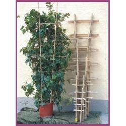 Drabinka bambusowa 150cm (01444)