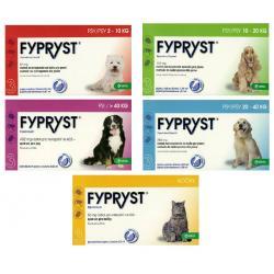 FYPRYST preparat na pchły i kleszcze dla psów 2- 10 kg 67 mg