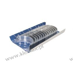 PANEWKI GŁÓWNE (STD) DAF CF, CF 85, XF, XF 105 MX 13303 - MX375 10.05-