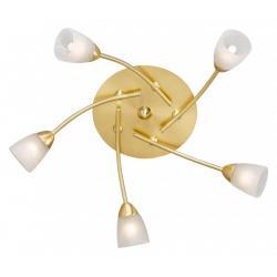 Lampa sufitowa Paul Neuhaus Arccadia 5 mosiądz matowy