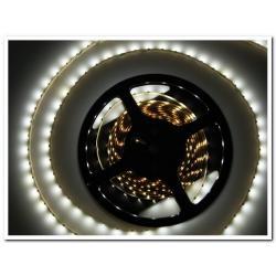 Taśma LED Ecolighting biała zimna 60led/m wodoodporna (rolka 5m)