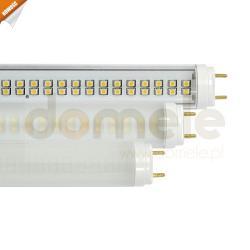 Świetlówka LED ElgoLEDstar T8-12 20W klosz mleczny barwa światła ciepła biała