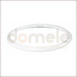 Świetlówka kompaktowa kołowa Paulmann G10q 305mm 32W ciepła barwa 88432...