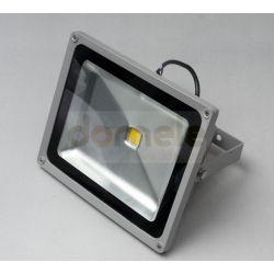 Halogen LED LightWind 1x30 Wat biały zimny...