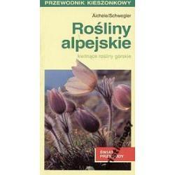 Rośliny alpejskie kwitnące rośliny górskie NOWA