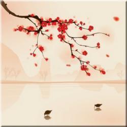 """obrazy nowoczesne """"kwitnąca wiśnia""""  HIT Akryl"""