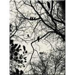 """obrazy nowoczesne """"zimowe drzewa""""  HIT Pozostałe"""