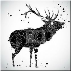 Obrazy nowoczesne na płótnie Akryl