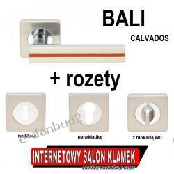 SUPER OKAZJA! Klamka BALI CALVADOS Gato na rozecie kwadratowej satyna + ROZETY GRATIS