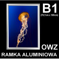 RAMKA rama ALUMINIOWA owz - B1 - + FOLIA / PLEXI