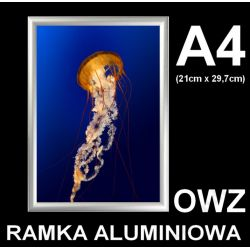 Rama zatrzaskowa aluminiowa OWZ A4 25mm + FoliaUV