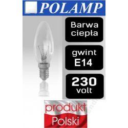 Żarówka tradycyjna ŚWIECZKA E14 25W/40W/60W świeca