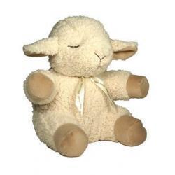 śpiąca owieczka