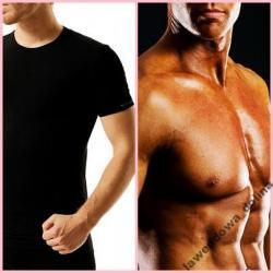 Koszulka Brubeck T-Shirt Brubeck*Oddychająca**L
