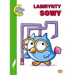 AMEET UA-4 LABIRYNTY SOWY...