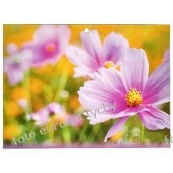 2020 kalendarz trójdzielny Kwiat Kalendarze książkowe