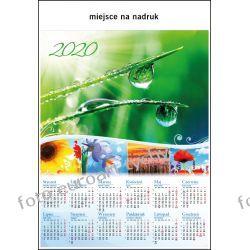 2020 kalendarz Rosa ścienny B1 Kalendarze ścienne