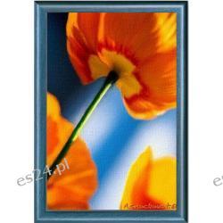"""Obraz  ręcznie  malowany  """"Pomarańczowe  maki"""" , 50x70 cm"""