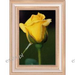 """Obraz  ręcznie malowany  """"ŻÓŁTA  RÓŻA"""",  50x70 cm"""