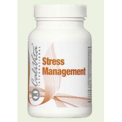 Stress Managment Pamięć, układ nerwowy