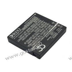Panasonic DMW-BCF10E 940mAh 3.48Wh Li-Ion 3.7V (Cameron Sino)