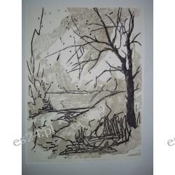 """GRAFIKA """"Samotne drzewo"""" linoryt barwny 31x 42 cm.ser. 3/12"""