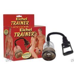 Eichel Trainer