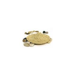 Algi mikronizowane- Laminaria digitata