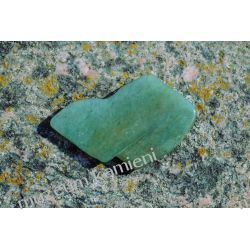 Awenturyn MIN33 Skamieliny, minerały i muszle