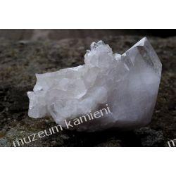 Kryształ górski MIN25 szczotka krystaliczna * piękna Skamieliny, minerały i muszle