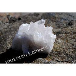 Kryształ górski MIN37 szczotka krystaliczna  Skamieliny, minerały i muszle