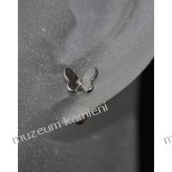 Motylki - kolczyki srebro próby 925 KWK097 Biżuteria i Zegarki