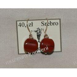 Kolczyki jaspis czerwony w srebrze KW083 skamieliny