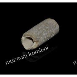 Belemnit SKAM28 - 80 mln lat - skamieniałość Kolekcje