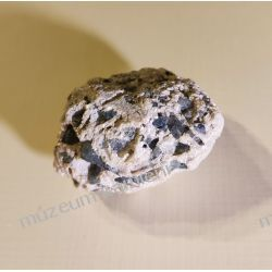 Turmalin indygolit Skamieliny, minerały i muszle