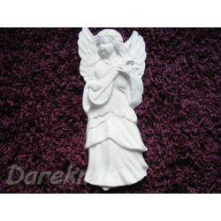 Anioł z gitarą Rośliny pnące
