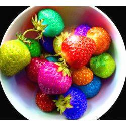 Kolorowe  truskawki-nasiona-50 szt.