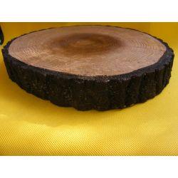 Plaster pnia drzewa-imitacja Rośliny pnące