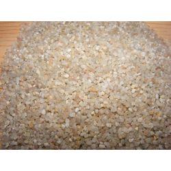 Żwirek żwir kwarcowy 1,4-2mm + 200 SZYSZEK Rośliny pnące