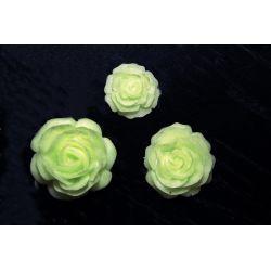 Świecące,fluoroscencyjne różyczki Ozdoby świąteczne