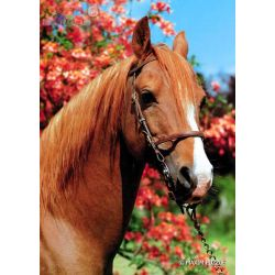 Puzzle Maxim Animals 150 elementów - koń...