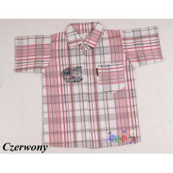 Koszula krótki rękaw dla chłopców z nadrukiem na plecach....